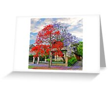 Illawarra Flame tree & Jacaranda Greeting Card