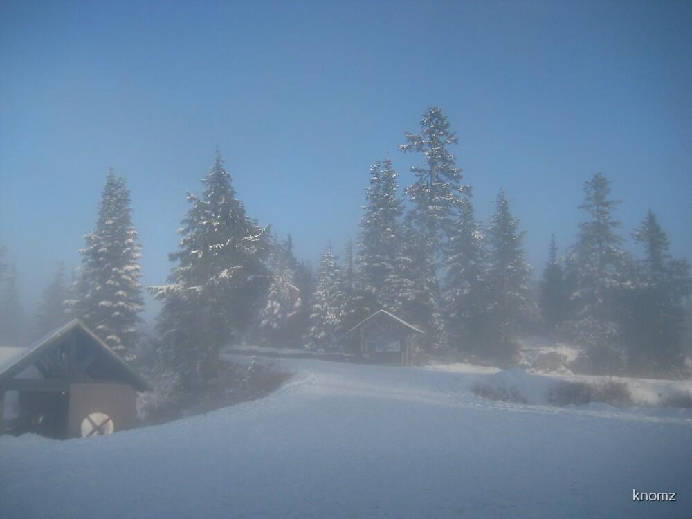 Snowy scene by knomz
