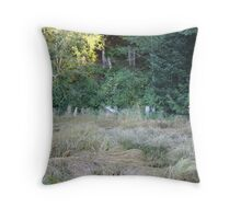 Passing of a old bridge Throw Pillow