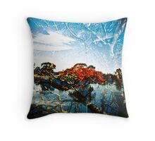 The old Devils Claws Throw Pillow