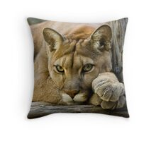 Texas Cougar Throw Pillow