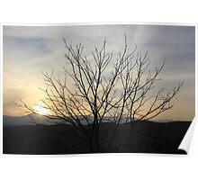 The bitter sunset Poster