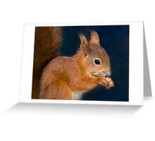 Tufty Ears Greeting Card