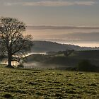 Morning mist in the Exe valley by frasersfotos