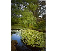 Monet Moment No 3 Photographic Print