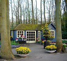 Keukenhof  Serie - The House by Diana F. Sá