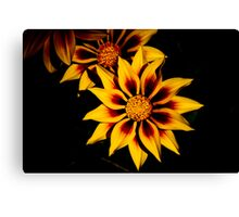 Stunning Flower Canvas Print
