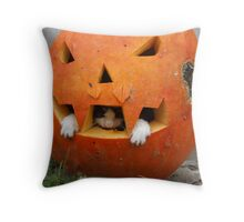 Vampire Stinky - are you scared? Throw Pillow