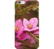 Wild Flower of Western Australia iPhone Case/Skin