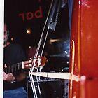 Bass playing iin Switzerland by Adam Irving