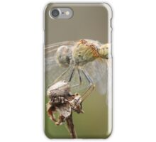 Dragonfly Close Up & Personal  iPhone Case/Skin