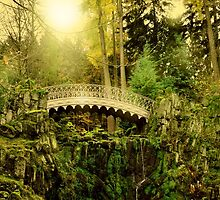 Bridge in the wild by franceslewis