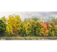 Autumn colors in a misty morning Photographic Print
