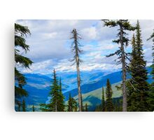MT Revelstoke view Canvas Print