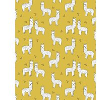 Alpaca - Mustard by Andrea Lauren Photographic Print