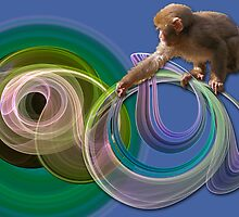 Monkey tricks by CanDuCreations