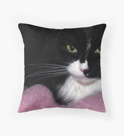 Black & White Cat on Pink Throw Pillow