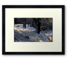 1032-Winter Greeting Framed Print