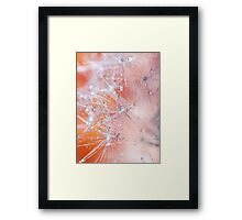 Frost.  Framed Print