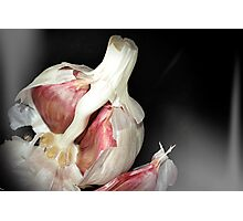 Garlic Still Life Photographic Print