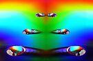 Spectrum Runway by Sally Green
