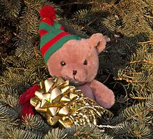 Chistmas Bear by cherylc1