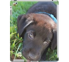 Puppy iPad Case/Skin