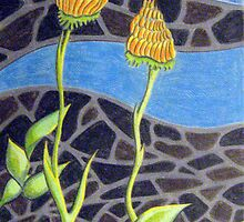 229 - FLORAL DESIGN - 01 - DAVE EDWARDS - COLOURED PENCILS - 2008 by BLYTHART