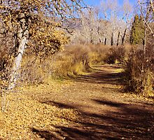 An Autumn Stroll by Beverly Lussier
