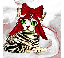 Red ribbon cat Photographic Print