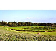 Alfalfa Hill Photographic Print