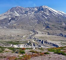 the path to mt. st. helens by 1busymom