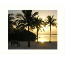 coconut tree morning silhouette Art Print