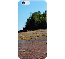 Temporarily Exposed! iPhone Case/Skin