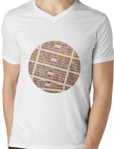 MEXICO CITY Mens V-Neck T-Shirt