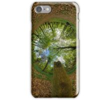 Butterfly Sculpture in Prehen Woods, Derry (Sky-in) iPhone Case/Skin