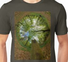 Butterfly Sculpture in Prehen Woods, Derry (Sky-in) Unisex T-Shirt