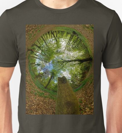 Butterfly Sculpture in Prehen Woods, Derry (Sky-in) T-Shirt