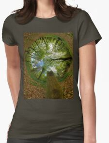 Butterfly Sculpture in Prehen Woods, Derry (Sky-in) Womens Fitted T-Shirt