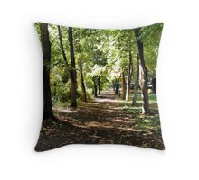 Path of Peacefulness Throw Pillow