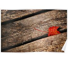 Red Leaf & Wood Planks Poster