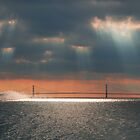 Mackinac Bridge Ferry boat by Charles Butzin