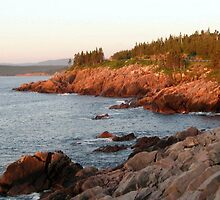 Part of east coast, Nova Scotia. by Robin M. Monk