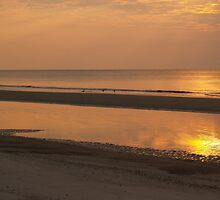 Hunting Island Sunrise Glow by Anna Lisa Yoder