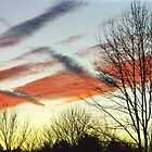 Colors and Clouds by clizzio