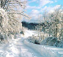 Pennsylvania Winter by clizzio