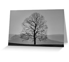 Tree silhouetted against misty hills Greeting Card