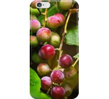 Sweet Grapes iPhone Case/Skin