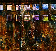 Windows to Vietnam  by Geraldine Lefoe