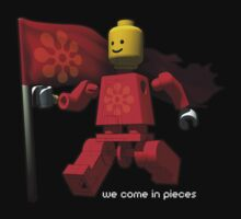 We come in pieces by fischer